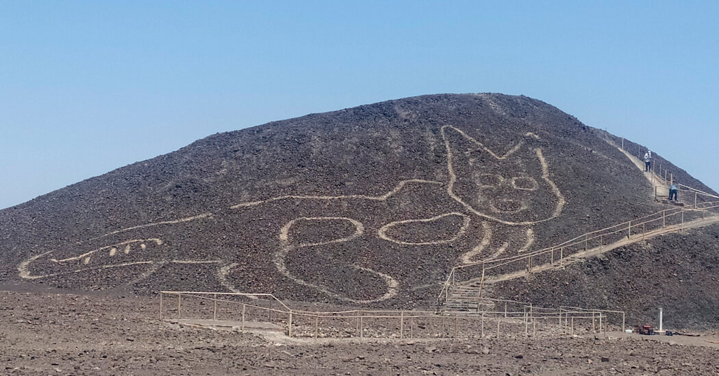 2,000-Year-Old Cat Etching Found at Nazca Lines Site in Peru